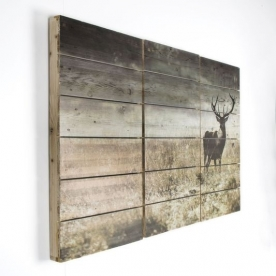 3-dílný dřevotisk 102501, Highland Stag, Wall Art, Graham Brown