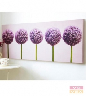 Obraz 40-234, Row of Alliums, Wall Art, Graham Brown