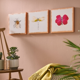 Set obrazů Beautiful Bugs 104580, Wall Art, Graham Brown