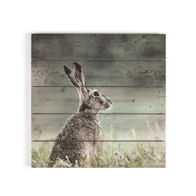 Dřevotisk Zajíc 102506, Hare Print On Wood, Wall Art, Graham Brown