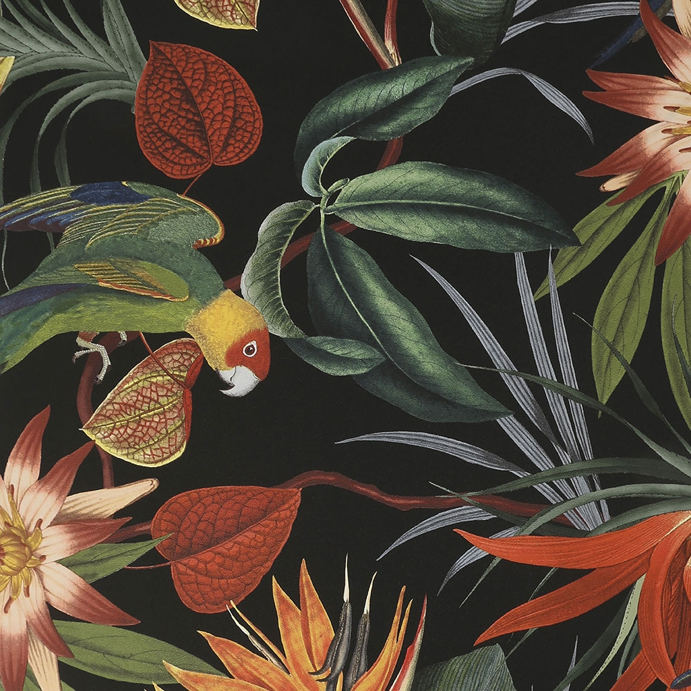 Non-woven wallpaper Exotic flowers, leaves and parrots 108602, Parrot Black, Paradise, Graham & Brown, Vavex 2022